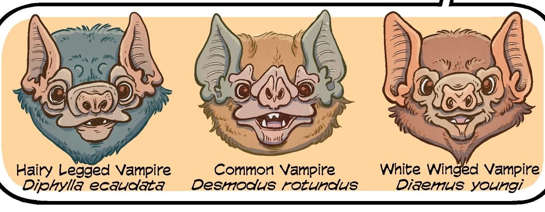 science comics bats panel
