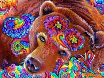 Bear Exuberance