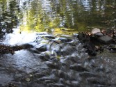 Painterly Rock Springs Stream