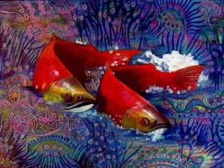 Salmon Passion