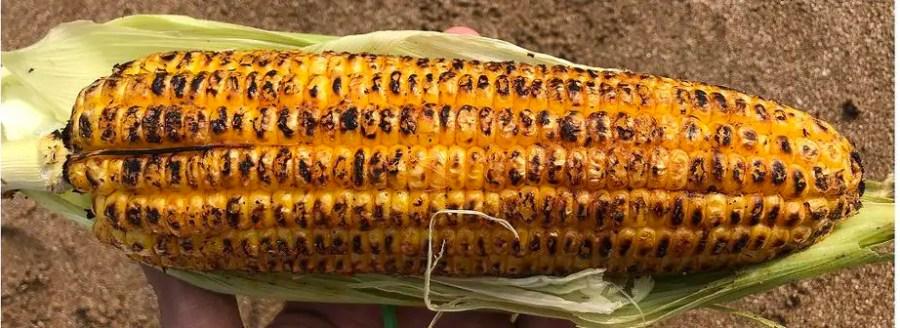 Corn on Aksa Beach