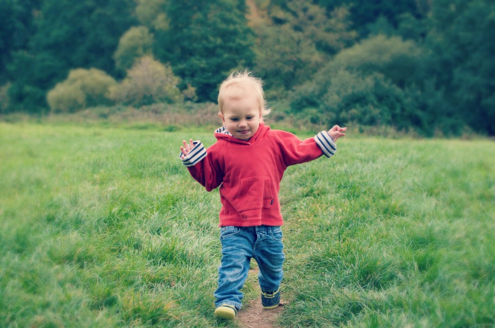 Toddler's Gonna Toddle – Living Arrows