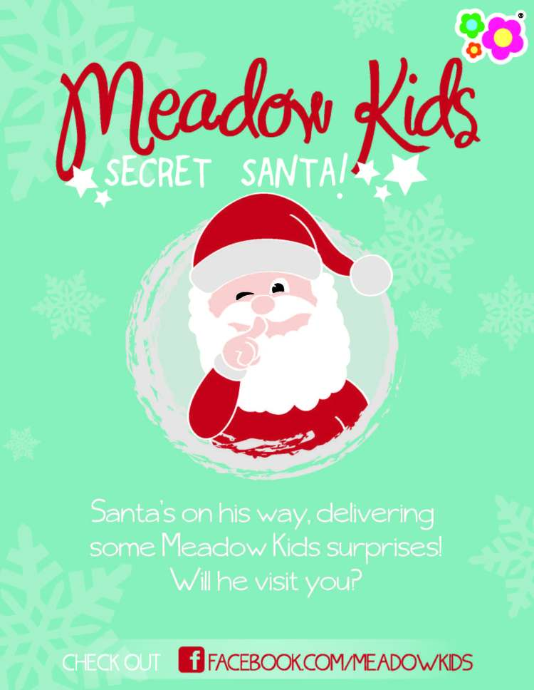 A Secret Santa organised by Meadow Kids