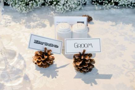 winter wedding pine cone place names