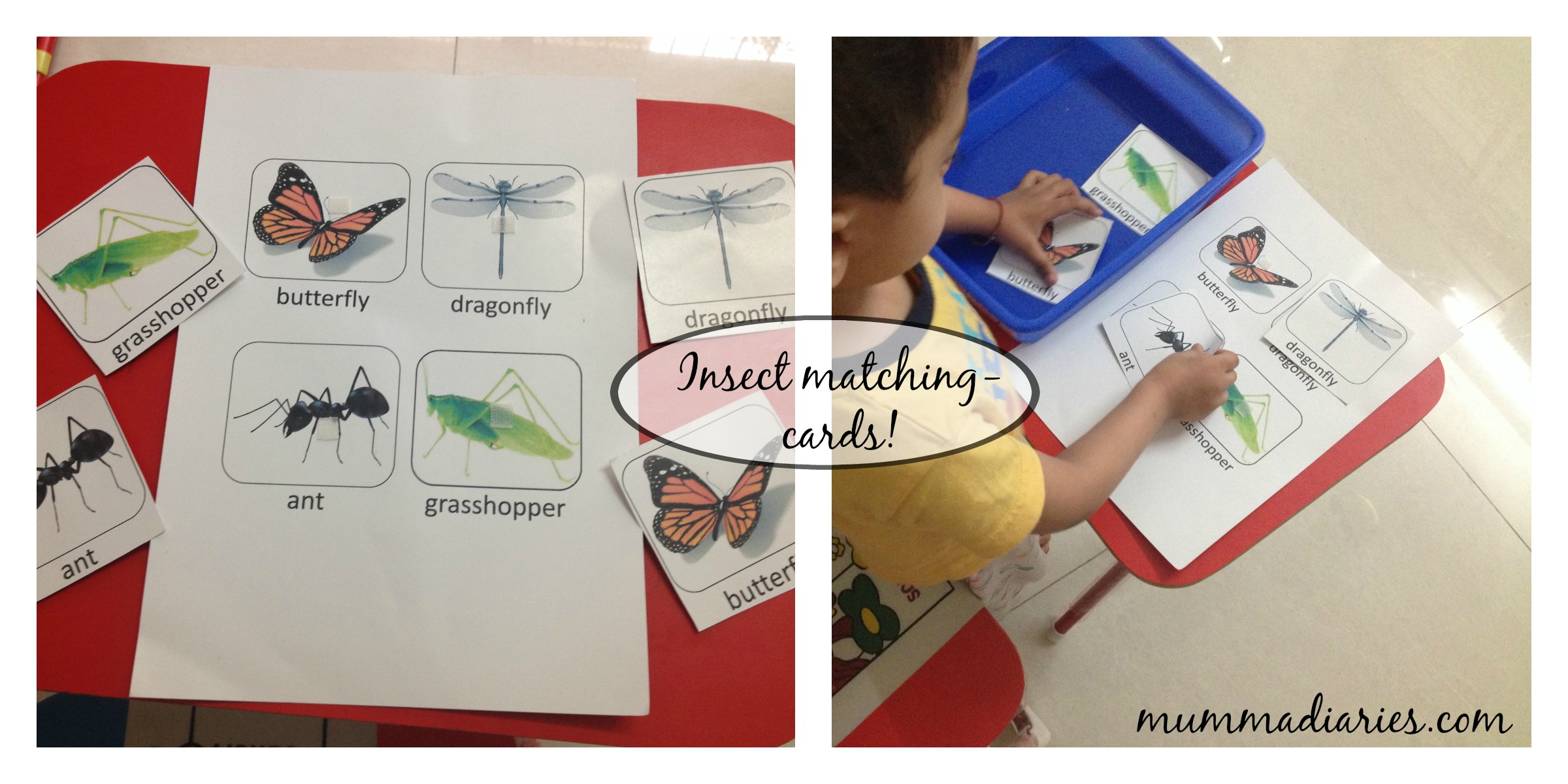 Montessori Inspired Unit Study For Toddlers