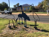 All but a few of the streets in Quilpie are named after birds!