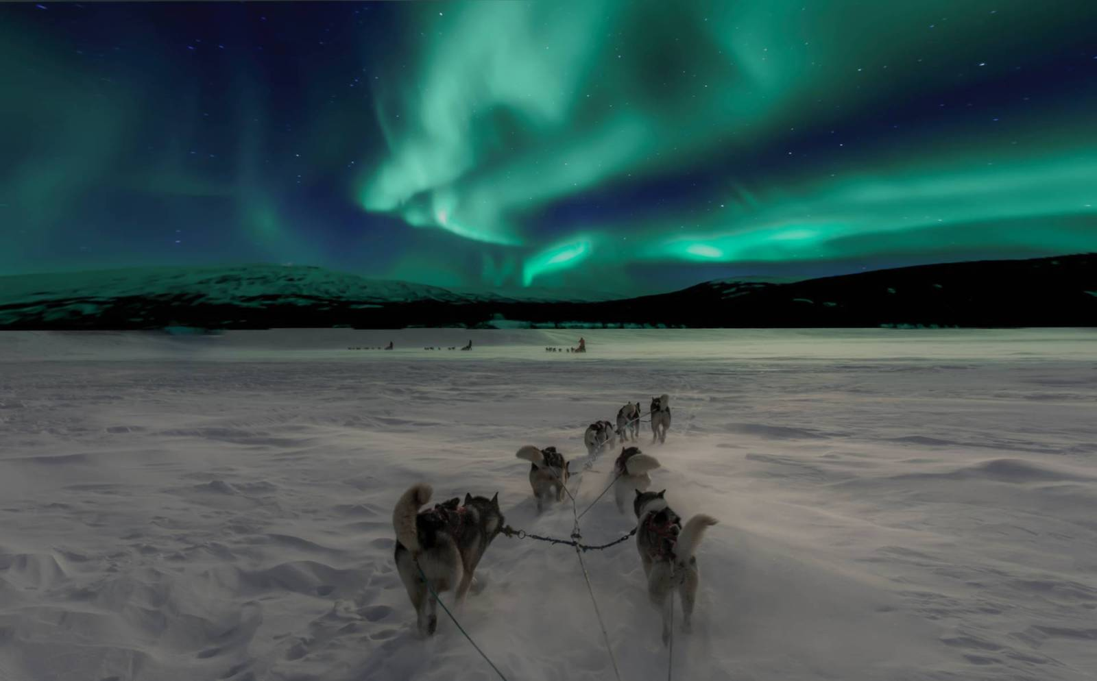 seeing the northern lights as a family being pulled in a sled