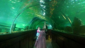 Little one and mummy at the Sealife Centre.