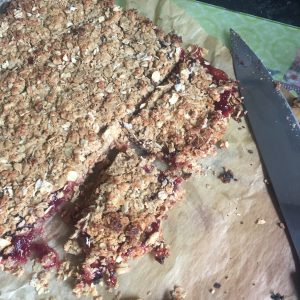 Oaty Jam Coconut Slices