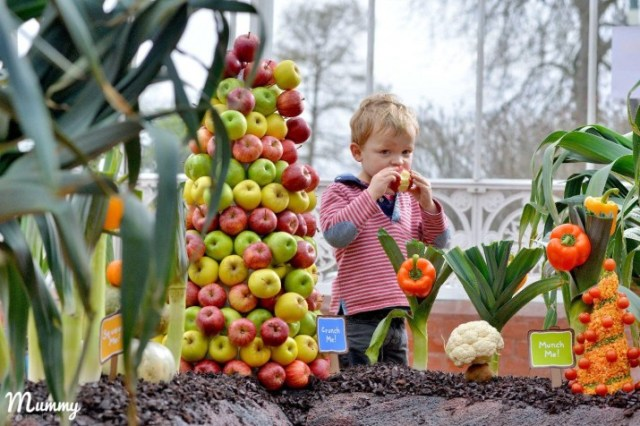 ELLA?S KITCHEN UNVEILS WORLD?S FIRST EDIBLE FOREST FOR LITTLE ONES