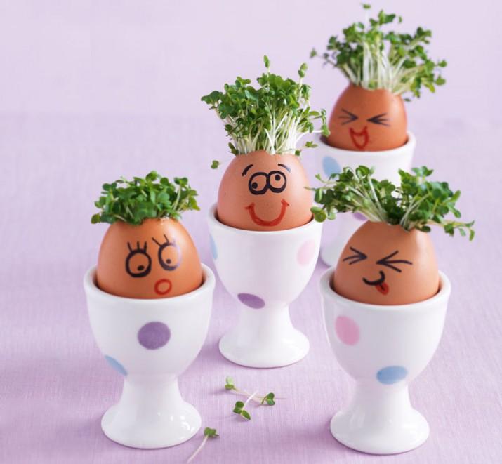Egghead Family