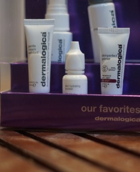 Dermalogica favourites kit: give the gift of beauty