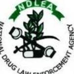 My Logo: NDLEA Recruitment 2020