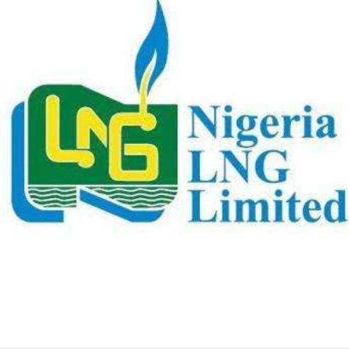 My Logo: Nigerian Liquefied Natural Gas Scholarship