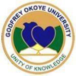 Godfrey Okoye University