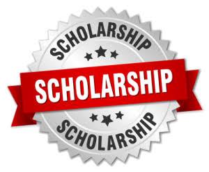My Logo : Croatian Scholarships Portal