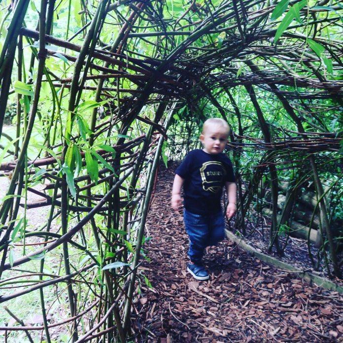 Aberdeen Family Weekend Photos & Vlog | Play Parks, Winter Gardens & Football Scotland Aberdeenshire Days Out Drum Castle Play Park Woods