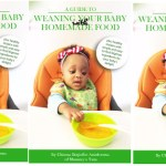 The Baby Weaning Guide