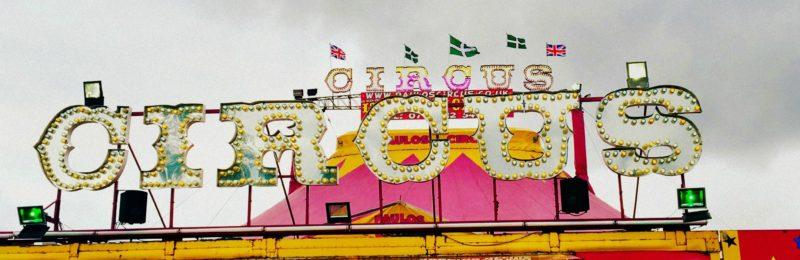 Paulos Circus at Darts Farm