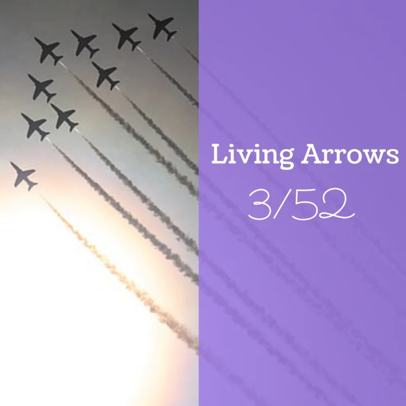Living Arrows 2017 // 3/52