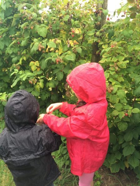 Ordinary Moments – 28/07/15 – Farm days and British weather