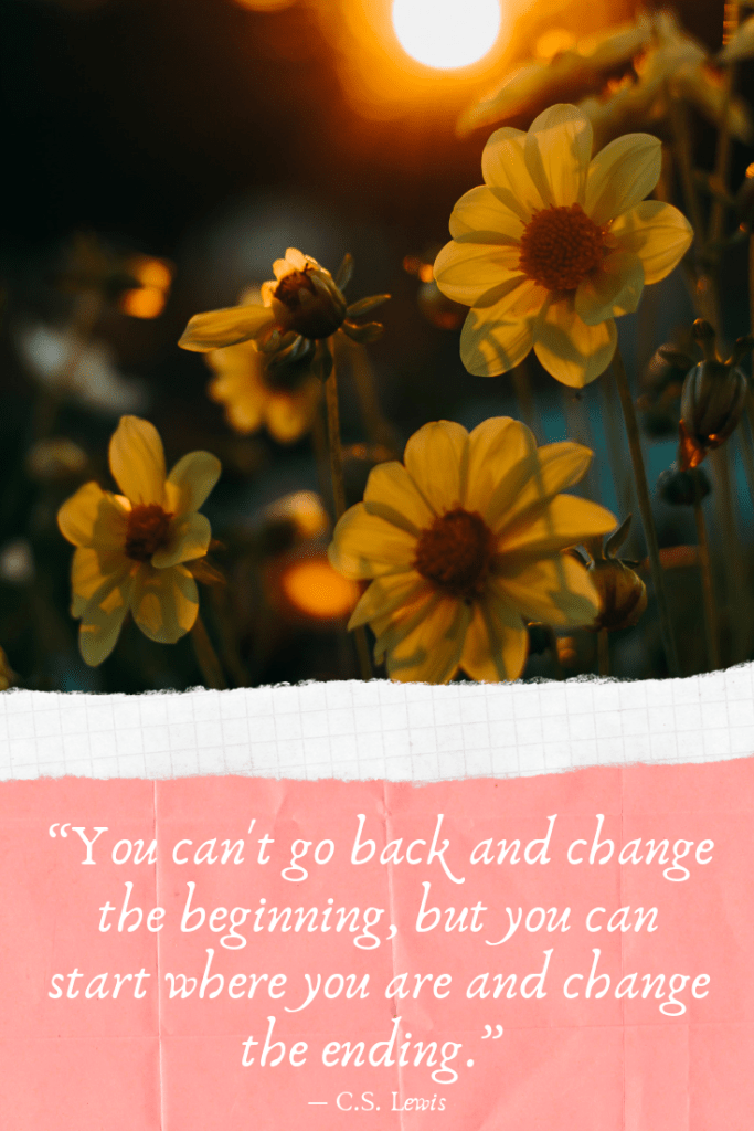 """""""You can't go back and change the beginning, but you can start where you are and change the ending."""" ― C.S. Lewis. Getting back on track with the blog"""