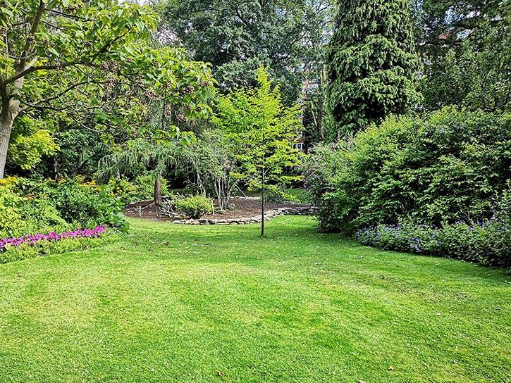How to uplift your garden