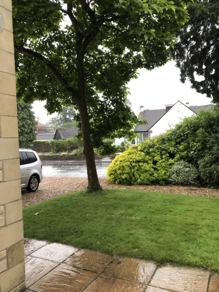 Rain, Rainy day, 365