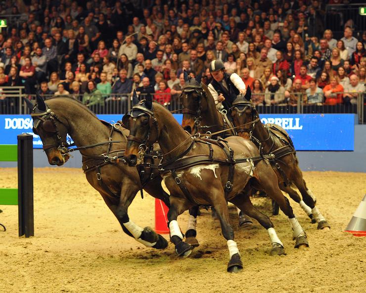 London International Horse Show 2014