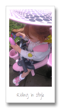 Review: Smart Trike Zoo 3-in-1 3