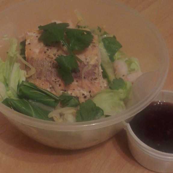 Healthy Lunchbox Lunches – Asian Salad with Salmon 4