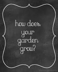 How does your garden grow? 6