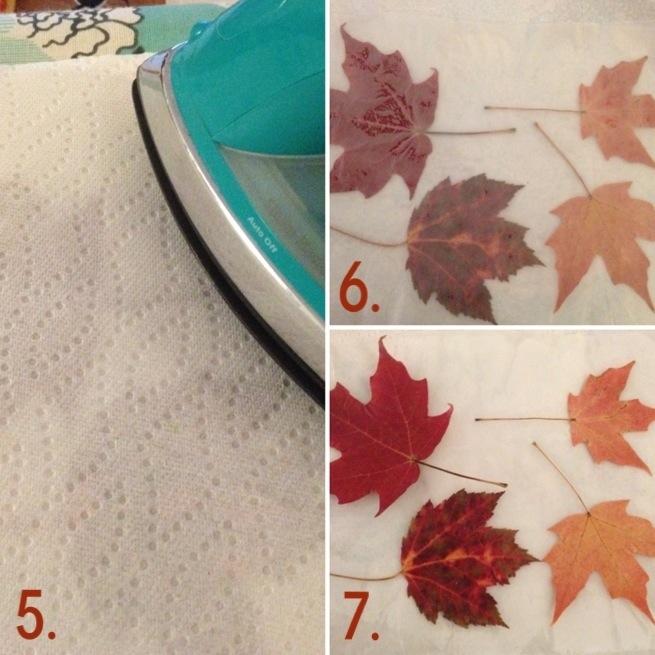 Waxed Leaves 2