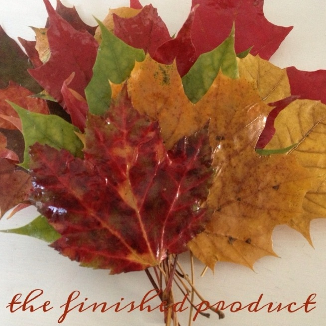 Waxed Leaves 6