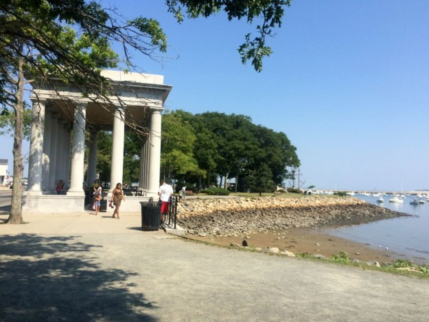 Plymouth Rock 4