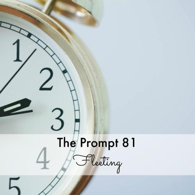 The Prompt 81: Fleeting