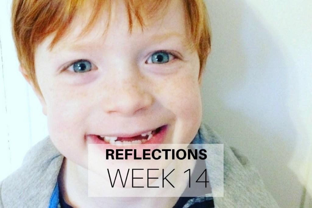 Reflections Week 14