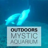 Outdoors: Mystic Aquarium, Connecticut