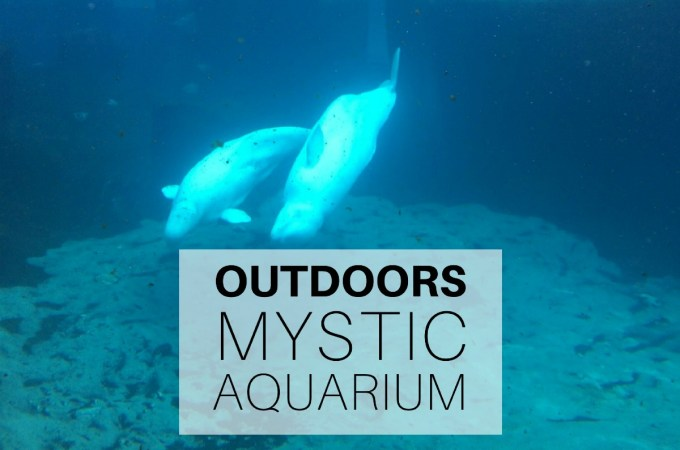 Outdoors - Mystic Aquarium