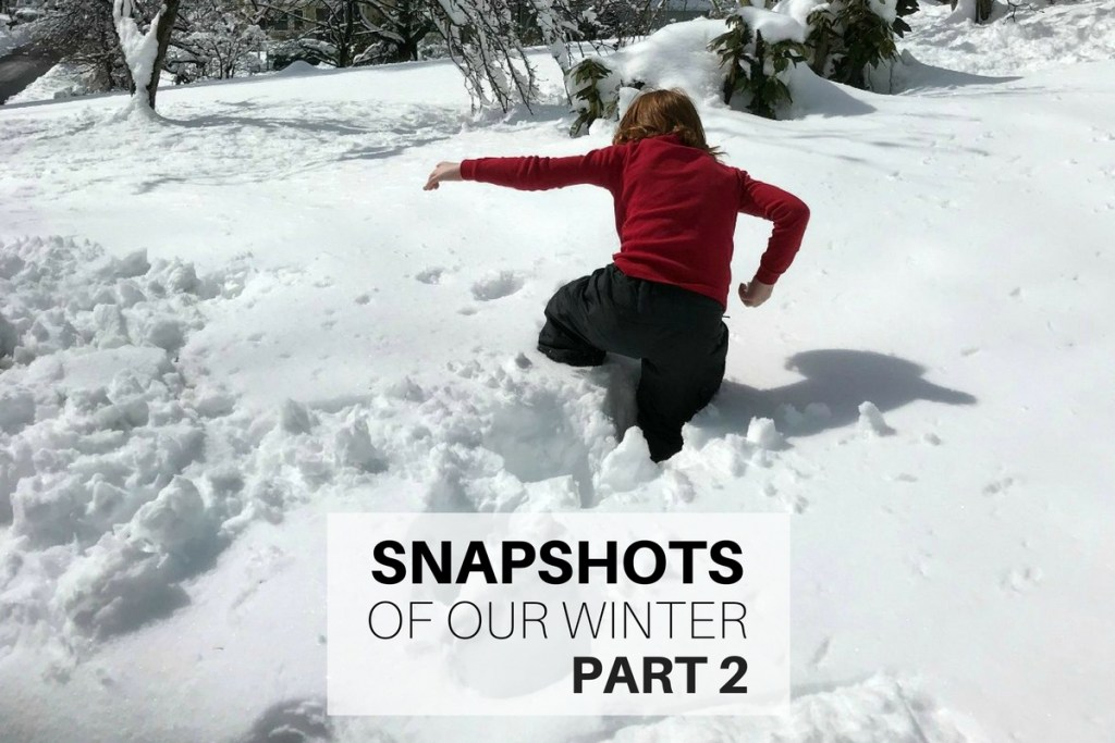 Snapshots of our winter Part 2