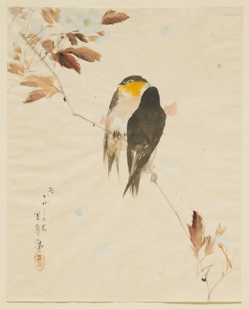 渡辺省亭-《鳥図(枝にとまる鳥)》-ドガ