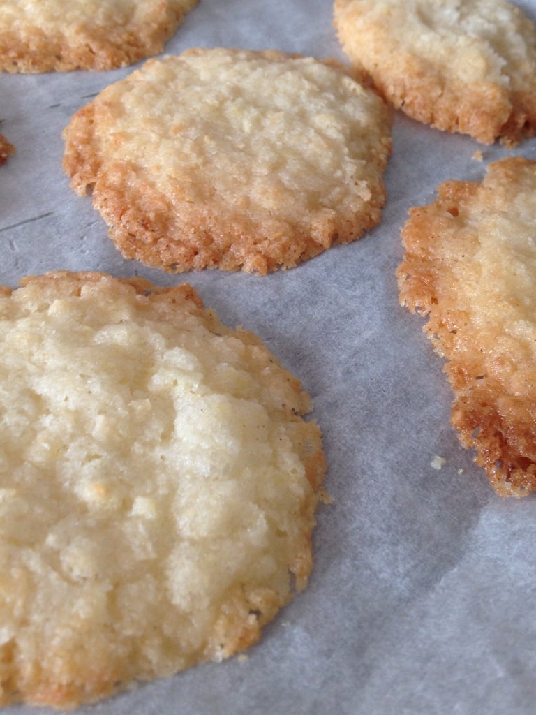Dairy and gluten free coconut biscuits