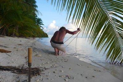 preparing coconut harvest