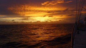 with sunrise