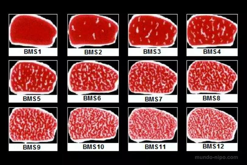 Tabela da carne de boi da raça Wagyu | Imagem: Edição MN