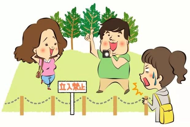 """""""Não pise na grama"""", mostra uma das ilustrações do manual (Foto: Reprodução)"""