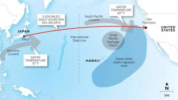 Mapa do percurso que Lecomte vai nadar desde o Japão até os EUA   Foto: Divulgação