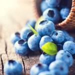 """Arándano: un fruto """"superpoderoso"""" para la salud"""