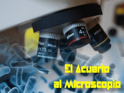 El Acuario al Microscopio