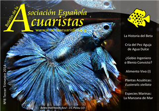 Boletín de la AEA nº8 2014